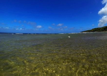 Vieques Fly Fishing