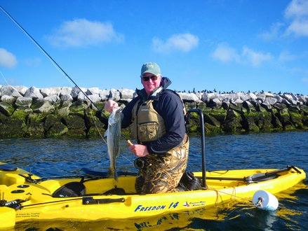 Cape Cod Freedom Hawk Kayak Fishing