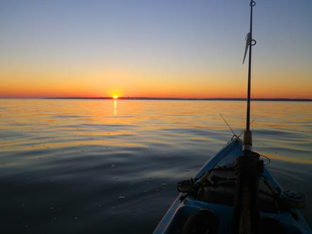 Cape Cod Fishing
